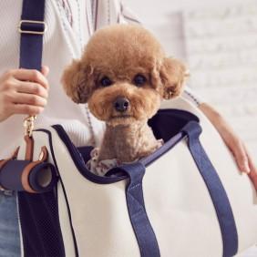 강아지 이동가방